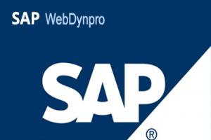 SAP Web Dynpro Training in Coimbatore