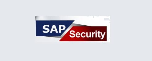 SAP Security Training in Coimbatore